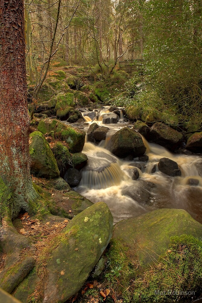 Wyming Brook by Mat Robinson