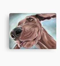 scooby Canvas Print