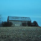 just a barn in caledon by deville