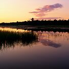 Colors of the Dawn by Yelena Rozov