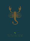 Scorpio Zodiac / Scorpion Star Sign Poster by Thoth Adan