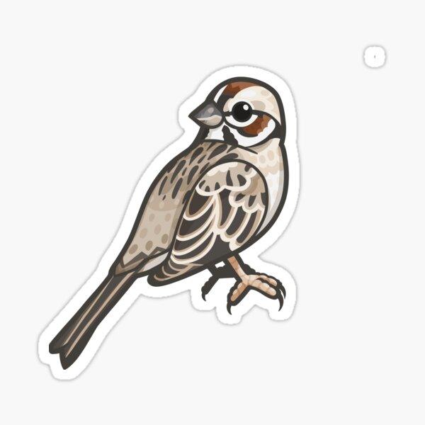 Lark Sparrow Sticker