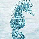 vintage seahorse by jashumbert