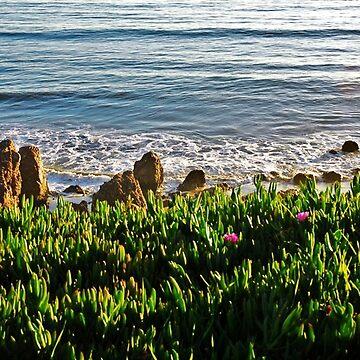 Malibu California by vmgh