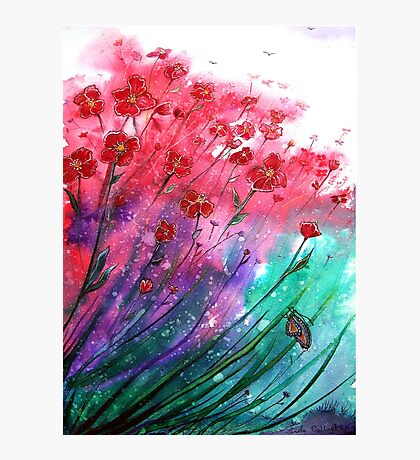 Flowers - Dancing Poppies Photographic Print