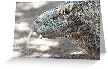 Tongue flick by miroslava