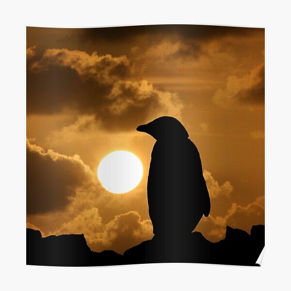 Penguin Silhouette Poster