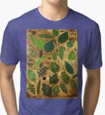 Wisconsin Leaves Tri-blend T-Shirt