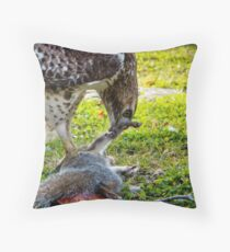 A hawk and it's meal Throw Pillow