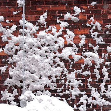 snow blown by Bruceott