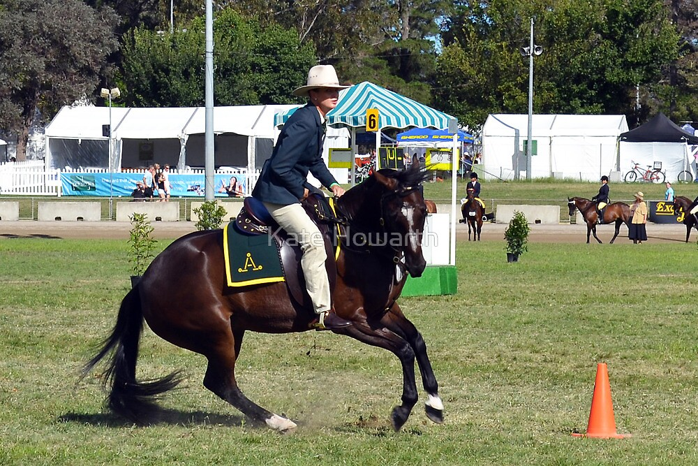 Supreme Champion Working Australian Stock Horse, 2012 Royal Canberra Show by Kate Howarth