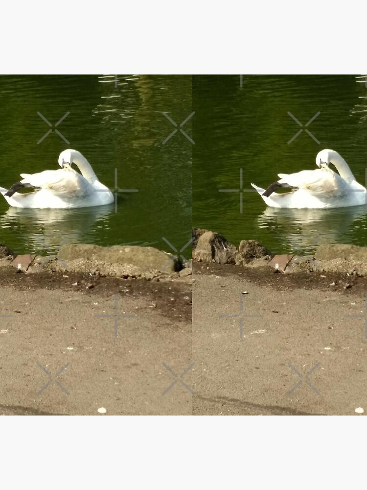 M.I. #43  ☼  Swan - Shot 1 (Pearson Park) by Naean