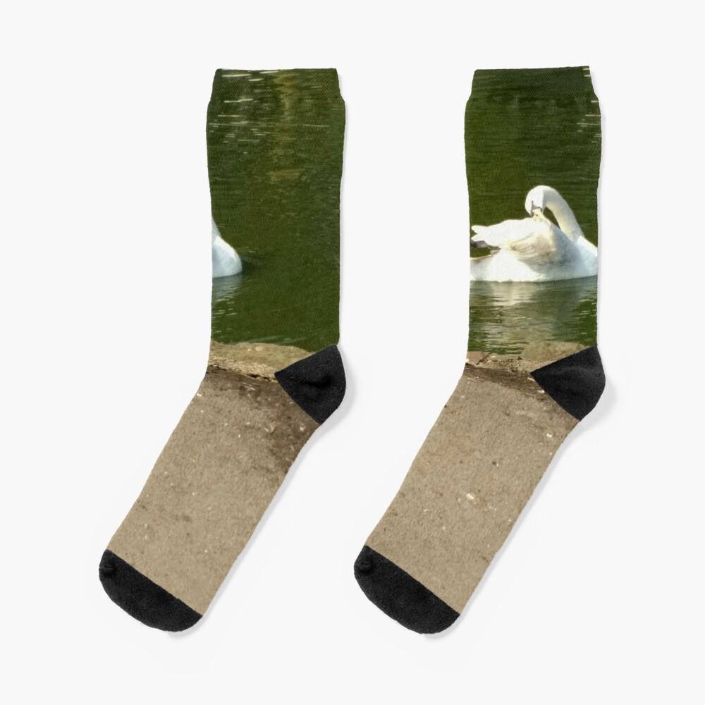 M.I. #43  ☼  Swan - Shot 1 (Pearson Park) Socks