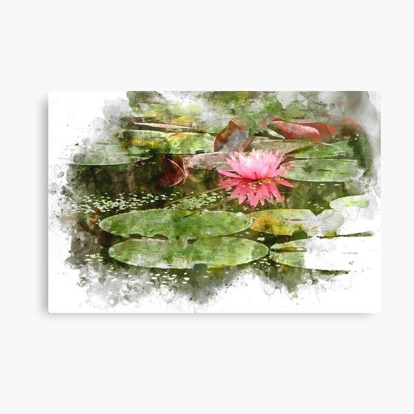 Pink Lily Pad Flower Art Canvas Print