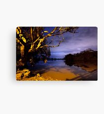 MOONLIGHT BENDS OVER THE BLACK SILENCE Canvas Print