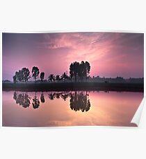 farmer-reflection-sunrise Poster
