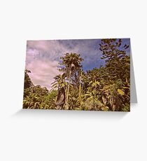 Tropical Forrest Greeting Card