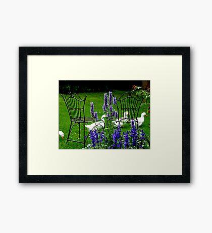 Relax In The Garden Framed Print