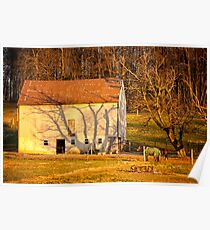 Tree Shadow on Barn in Early Morning Light Poster