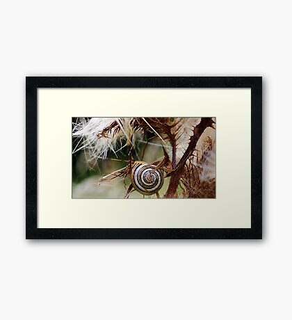 Home is Where... Framed Print