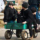 Amish Boys in a Wagon by KellyHeaton