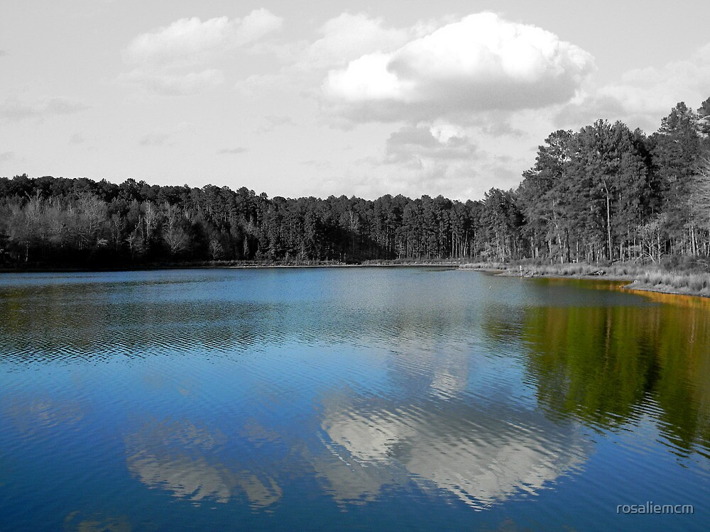Colorful Water by rosaliemcm