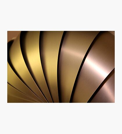 Shiny Armadillo. Photographic Print
