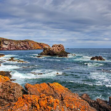 St. Abbs Rocks by tomg