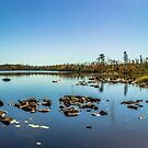 Eisans Lake Panorama by pultimily