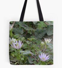 Windflowers, thimbleweed, wood anemone Tote Bag