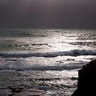 Shine by paul erwin