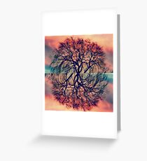 Willow Tree Sunsets Greeting Card