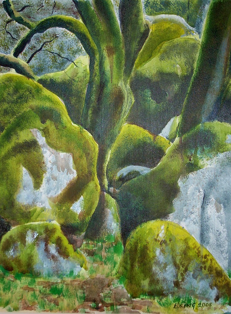 Moss on Rocks by Emily King