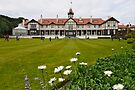 Government House Wellington by Werner Padarin