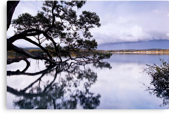 The Sky is Falling - Mossy Point, NSW by Malcolm Katon