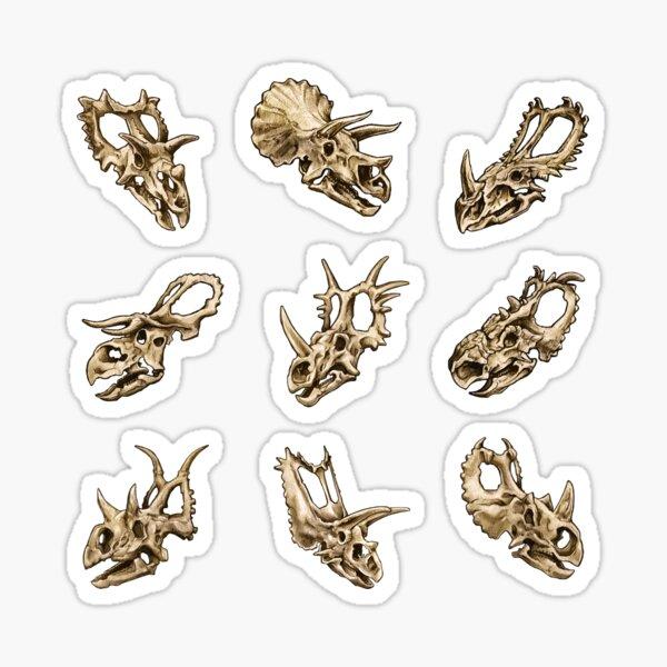 Dinosaur Skull Sticker Set Ceratopsia Sticker