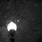 The Lamp Post in the Snow by BarkingGecko