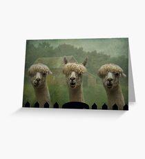 The Alpaca Farm Greeting Card