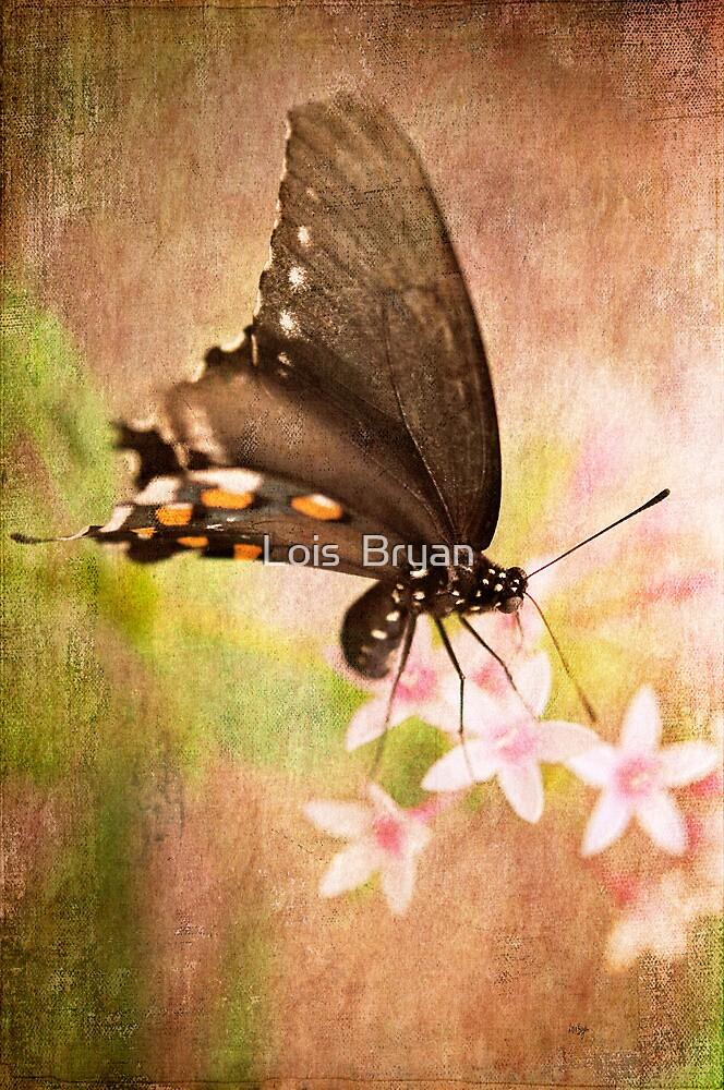 Spring Pastel by Lois  Bryan