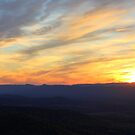 Shenandoah Sunset by Cecilia Carr