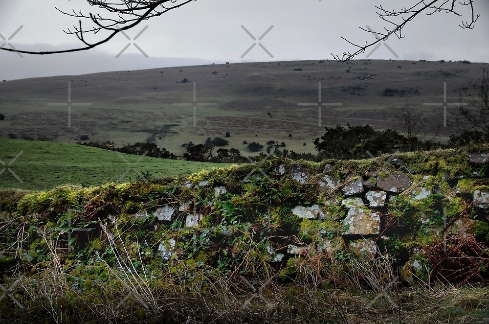 Moor Wall by Country  Pursuits