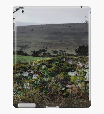Moor Wall iPad Case/Skin