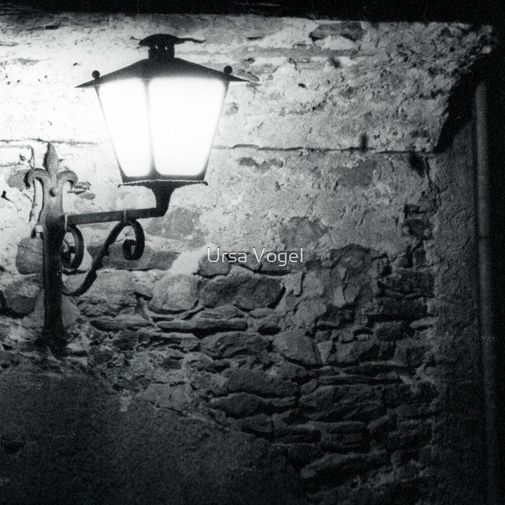1983 - the wall by Ursa Vogel