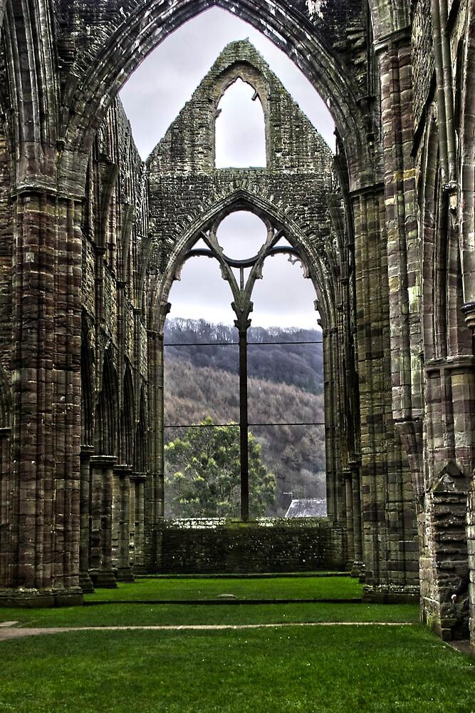 Tintern Abbey  by James Taylor