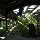 Abandoned New Jersey Central Railroad Terminal, Liberty State Park, Jersey City, New Jersey  by lenspiro