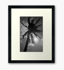 Palm Flare Framed Print