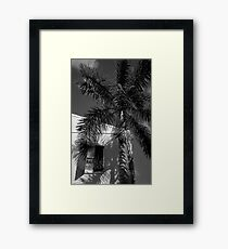Tropical Shade Framed Print