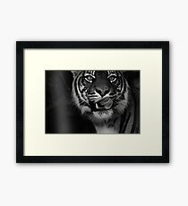 Delicious ! Framed Print
