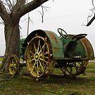 Deere On The Prairie by WildestArt