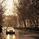 Rain - Greenwich Village - New York City by Vivienne Gucwa